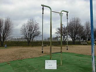 東運動公園ロープ登り ビフォー
